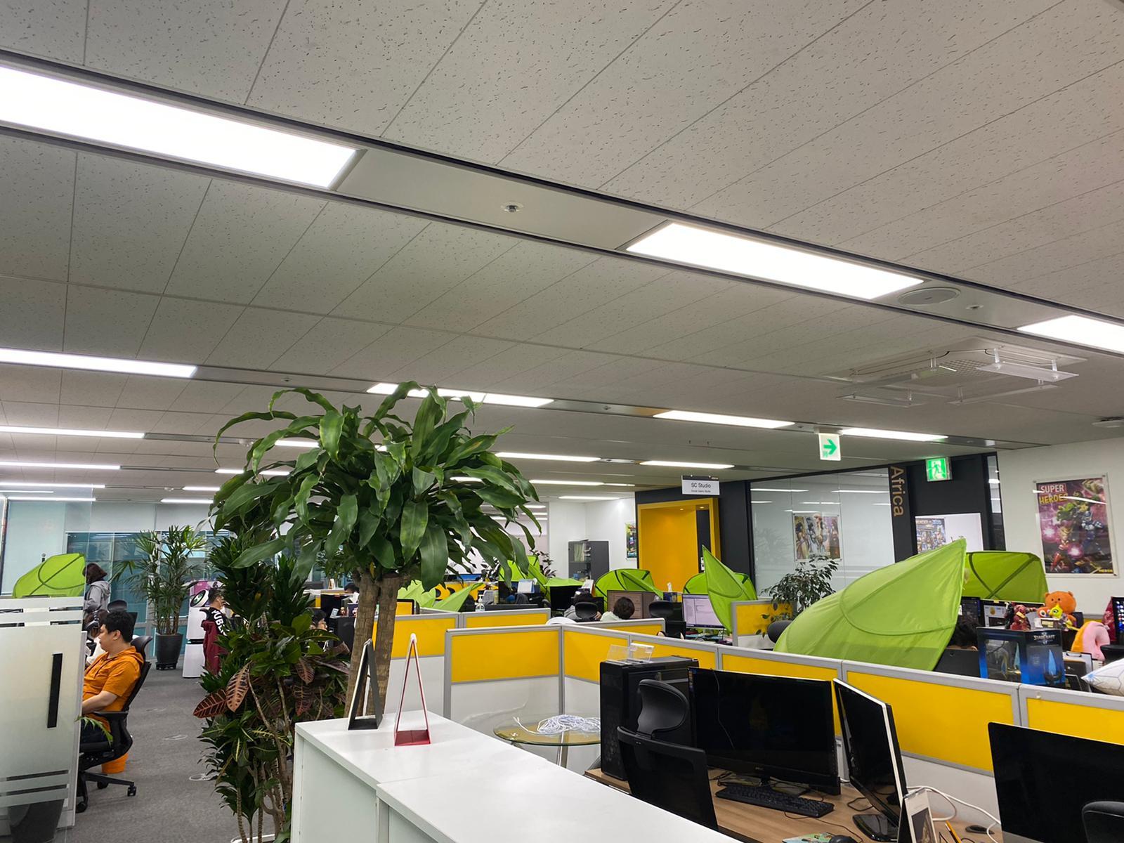 사무실 환경