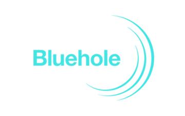 블루홀,새이름달고모바일공략강화