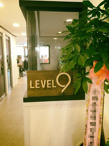 level9_4